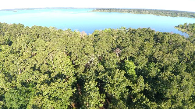 0 County Line Road, Pineland, TX 75968