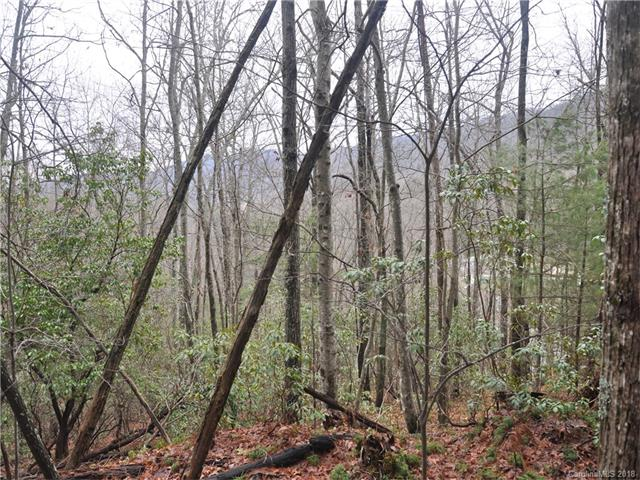 Ridge top 4.07 acres, views of Pinnacle Mountain and Camp Blue Star, adjoining conservation lands, light restrictions, small stream, paved frontage, wood land.