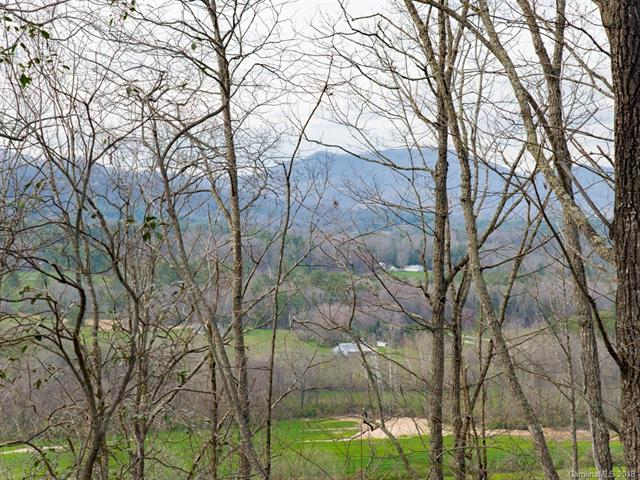 Unique opportunity to build a dream home with a privacy buffer. Okoboji Wilderness is a gated community overlooking the Cane Creek Valley, featuring 50 community acres, a quintessential red barn for entertainment and two beautiful ponds for homeowners - all just 25 easy minutes to downtown Asheville. Proposed homesite on upper lot features panoramic views of the valley with lower providing seclusion and protection of the view. Underground power and cable in place. Drip septic system required.