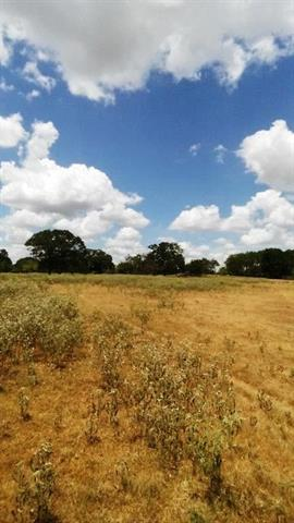 Approximately 65.787 acres of good, rich land. Existing build site with water meter already established as well as multiple building site options. Electricity on site. Lots of Hardwoods to include big Oaks, post oaks, live oaks and pine. Really good browse. Great hunting. Plenty of wildlife, to include, deer, hog and much more. Large tank with water on top on property. Big, deep dry weather creek runs through property. Green grasses. Native grasses. All minerals owned will sell with acceptable offer.