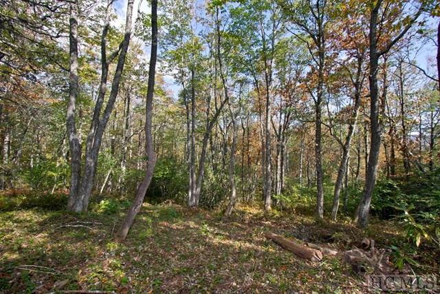 10 Hardscrabble Ridge Road, Highlands, NC 28741