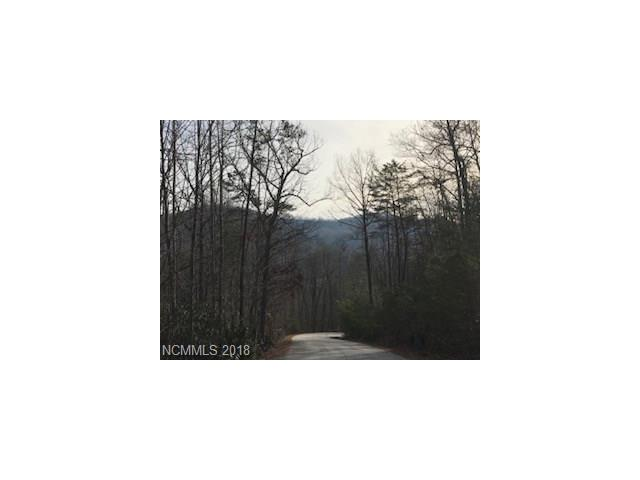 Beautiful lot within Old Orchard Subdivision located 15 minutes from Lake Lure and 20 minutes from Hendersonville. Amenities include a clubhouse with a pool, the perfect gathering spot. 336 Falling Leaves Lane is situated next to 7.81 acres of green space. Come build the home of your dreams.