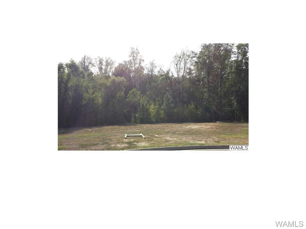 Large lot that will make a good home site in Hinton Place.  Priced to sell.