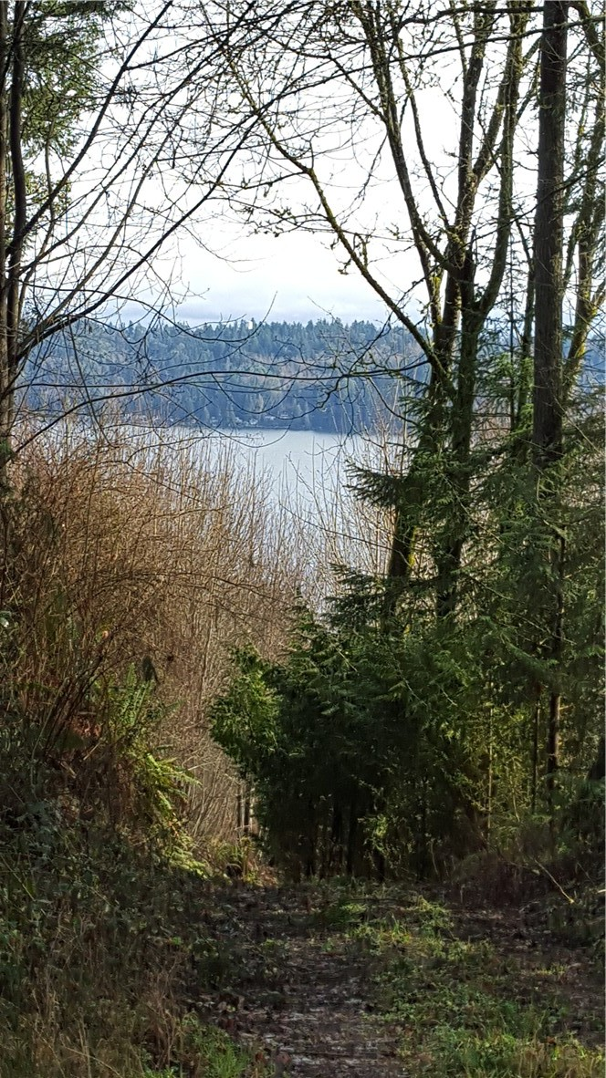 SE View Park Rd, Port Orchard, WA 98367