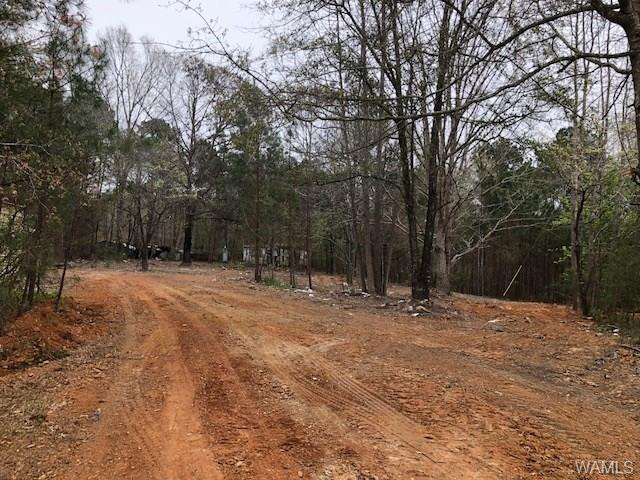 5+/- acres fronts on corner of Pine Ridge Dr and to the corner of Pine View.  Previously had a mobile home but was moved.  Has an old mobile home (of no value) on back of property.  Septic tank and water meter is already on the property.  Metal building excluded.