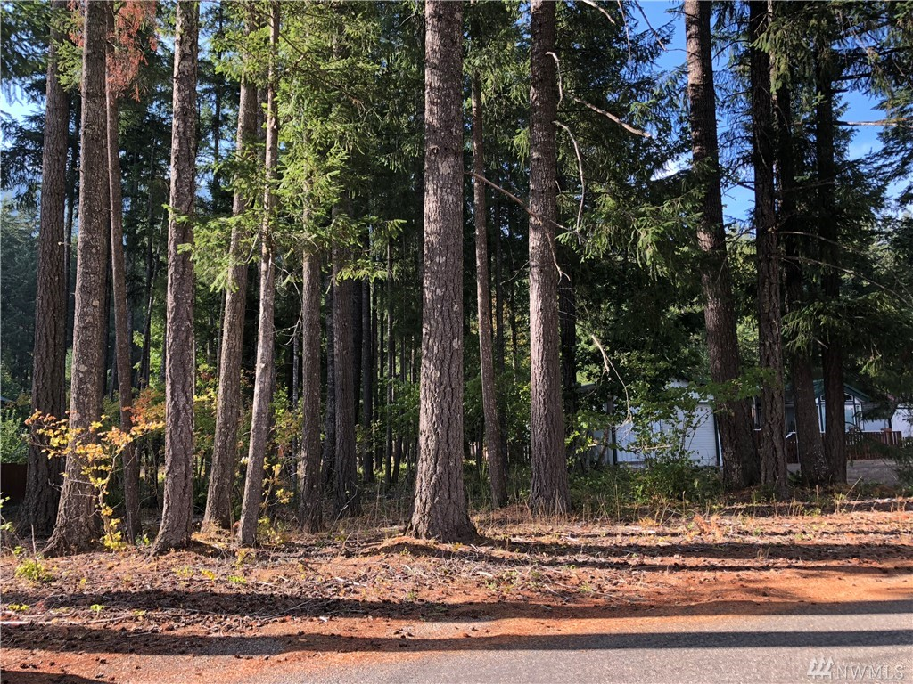 Desirable .26 acre residential lot in quiet High Valley neighborhood in Packwood WA. Level, forested and beautifully located in the heart of ski and hiking country. 25 minutes to Stevens Canyon entrance to Mt Rainier. Out of the flood zone. High Valley HOA amenities include all residential water use, 9 hole golf course, community clubhouse, outdoor pools & playground equipment, Steps to Cowlitz River access. Less than 1/2 mile to trails into GPNF. Fantastic vacation home or RV site. $32/mo dues