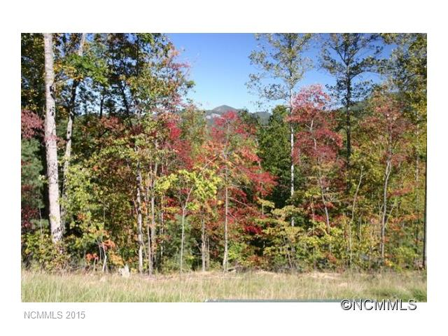 LOT LIQUIDATION...........fantastic owner financing on these 1 to 2 acre tracts with beautiful mountain views, paved roads and underpower power! Just minutes outside Hendersonville and Lake Lure. Hurry for the top choices! Priced from $21,500!
