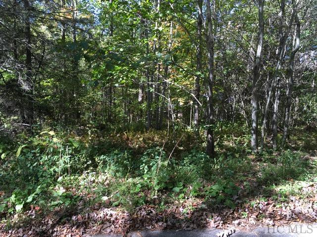 This is an A+ lot for all the right reasons...flat and buildable natural grade, access to Mirror Lake, and a friendly neighborhood of cabins and cottages that surround the property.  Close to town and on the Highlands Greenway Trail System.  This is actually 2 parcels that combine to form a +/- .55 acre footprint.  Town of Highlands states 4100+ impervious surface allowable build out.  Imaging the perfect Highlands get-a-way right here!