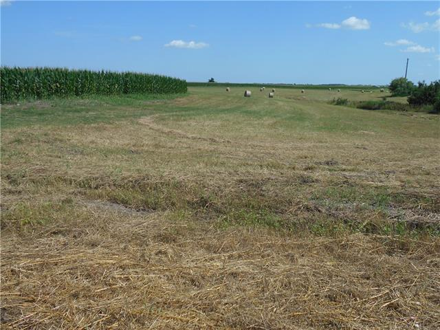Fertile farm land--three sides CR 462 road frontage.  Panoramic views of rolling fields, beautiful sunrises and sunsets.