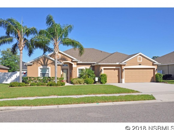 807 Snapdragon Dr, New Smyrna Beach, FL 32168
