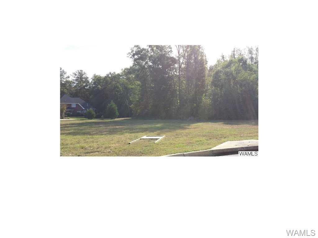 Almost 1 acre lot in Hinton Place off of Hwy 69 South.  Well established neighborhood, great place to build your home.