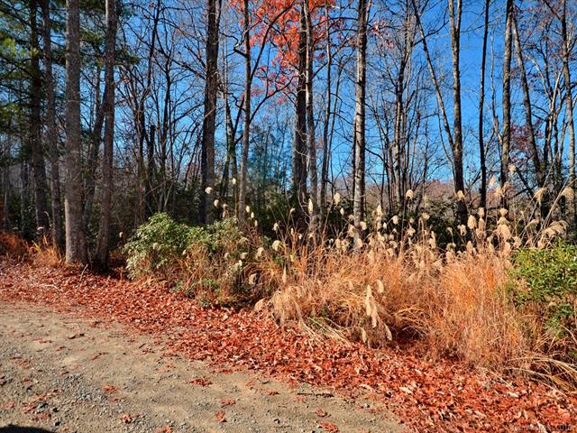 Wooded lots can be cleared for your dream house. Includes lots 19-21 with additional lots for purchase.