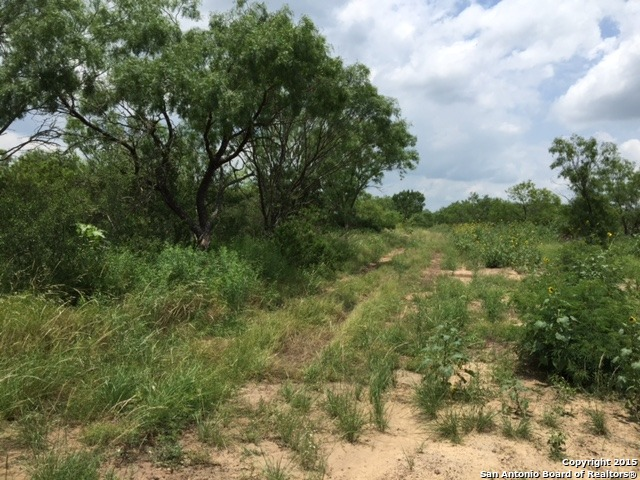 Cr 2450 S Curtis Road Moore Texas 78057 Mls 1153556