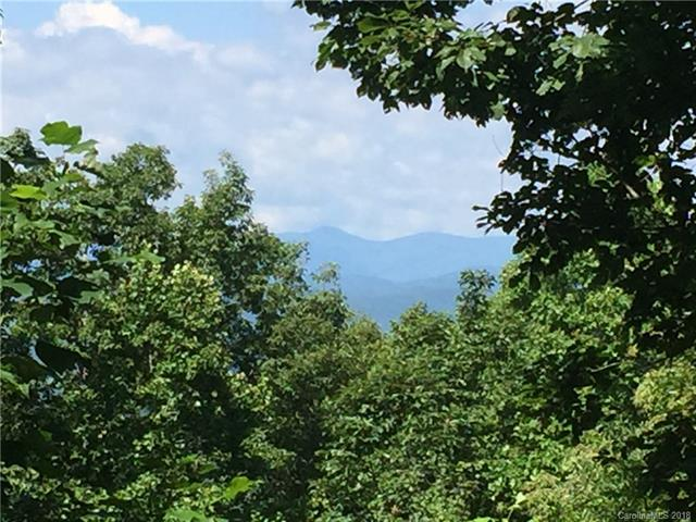 Enjoy the mountain views on this easy build 1.09 acre lot. Located in desirable Somersby Park a gated community, a growing and active community located in beautiful Laurel Park, just outside of Hendersonville, NC.  This private Mountain gated community features upscale homes, breathtaking scenery, abundance of rhododendrons, mature hardwoods, evergreen trees, spring fed streams, ponds and walking trails. Enjoy the privacy of a quiet mountain enclave yet be just minutes from Historic Downtown Hendersonville.