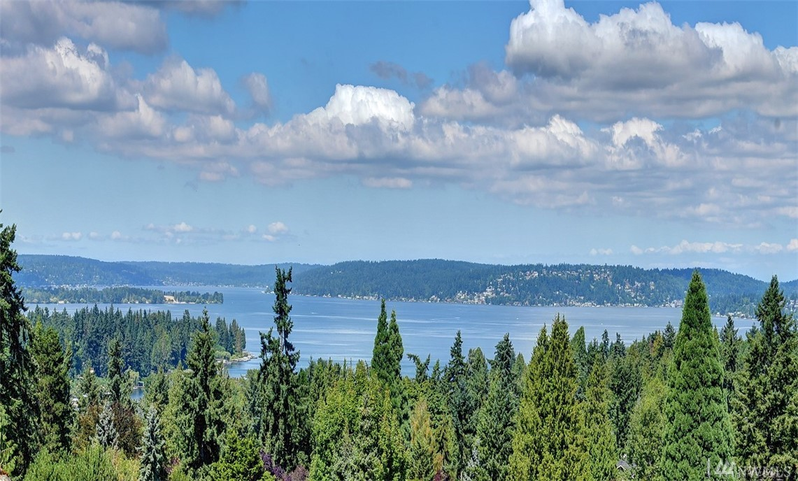 2410 91st Place NE, Clyde Hill, WA 98004