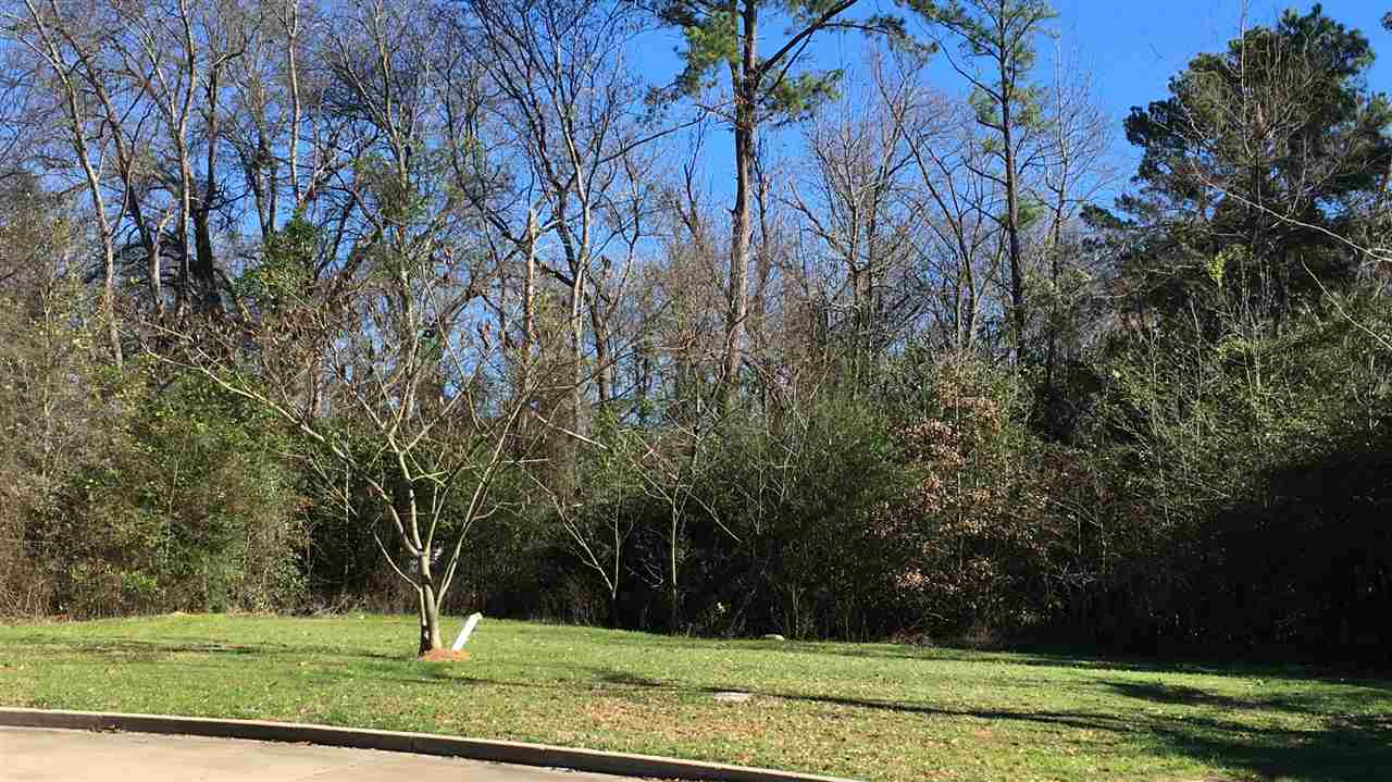 This Pecan Park lot is ready to build your next dream home!! Several lots to choose from just bring your builder. Great location to town and the dead end cul de sac allows for a quiet street! HOA is $300/yr Willing to sell multiple lots at a discount - calls for details!