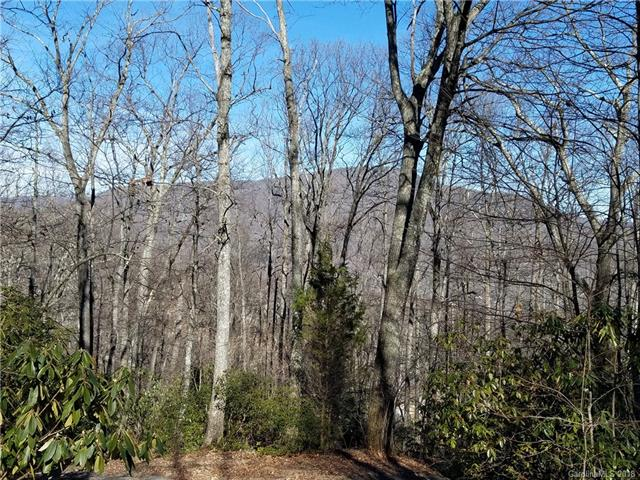 Nestled in the Upper Hickory Nut Gorge, this unique lot offers mountain views with multiple home site possibilities amidst hardwood trees. This is the last available lot in McGuffey Ridge, a 15-house development. Property is located on the point of the ridge at 3,200 foot elevation, offering more possibilities for views and privacy. Possible owner financing available. Homeowners' Association annual fees cover maintenance of community water system, roads, and common areas. An advantage because drilling water wells and building roads can be costly in the mountains. Underground electric utilities already in place. Less than 20 miles from Asheville, Hendersonville, and Black Mountain. Chimney Rock Park and Lake Lure are 12 miles away, with the Blue Ridge Parkway equally close. The perfect home site for nature enthusiasts with 25 miles of hiking trails in the Florence, Little Bearwallow, and Bearwallow Mountain Preserves-- a total of 10,000 acres. Your ideal home awaits you!
