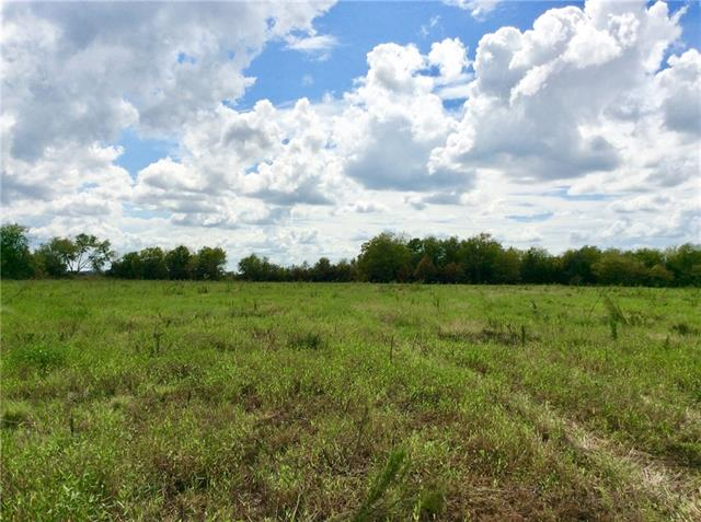 18.4 acres loacted near the intersection of FM 141 and Hwy 21 in Dime Box. This tract is mostly cleared with a cluster of trees and brush at the front. An entrance with a culvert is in place on FM 141. Property is ag exempt.