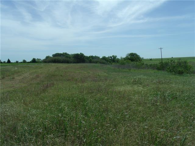 Cultivated property currently in row crops. Great location and good elevation on this slice of Texas. 30' access easement to Southern portion of tract from County Road 301. Seasonal creek and greenbelt along the North side of tract.