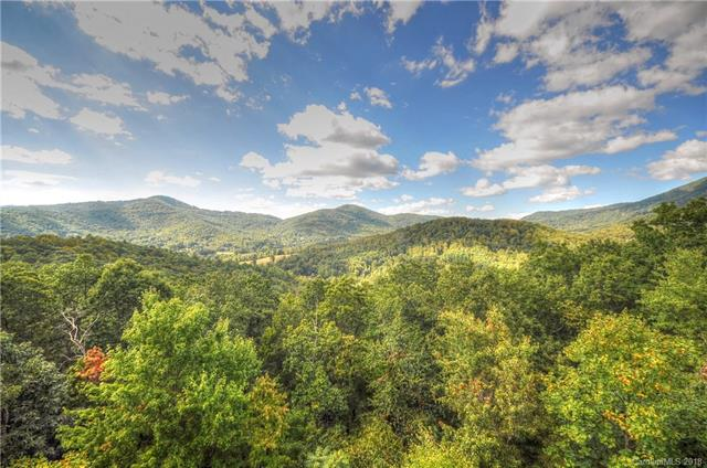 316 Mountain Laurel None, Asheville, NC 28805