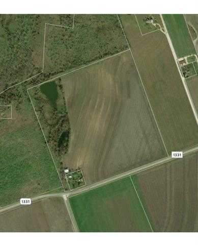 50 Acres of highly productive farm land with 1,200 foot of road frontage on FM 1331. Land is also available in three 16.666 Acre tracts. Seller will consider owner financing. Perfect spot for a business with easy access to HWY 95. Close to beautiful Lake Granger.