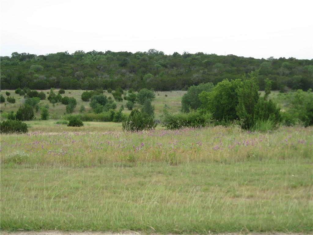 TBD County Road 429 Lane, Glen Rose, TX 76043
