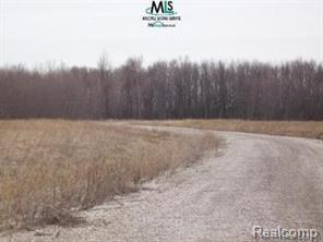 HURRY!!!  THIS IS A MUST SEE!!!  WHERE WILL YOU FIND A SUBDIVISION READY TO GO LIKE THIS?  THESE LOTS ARE PREPPED WITH A PRIVATE ROAD ALREADY ESTABLISHED.  UTILITIES ARE IN.  WHEN A DEVELOPER HAS TO DEVELOP A ROAD IT TAKES TIME AND MONEY, THIS ALREADY HAS BEEN DONE FOR BUYER OF THESE LOTS.  CONSUMER ENERGY AND DTE ARE READY FOR THIS PROJECT. THIS IS THE LAST PRIVATE ROAD ISSUED IN CAPAC. THE MAIN ROAD IS PAVED WITH LIMESTONE. THE SELLER HAS DONE ALL THE PREP WORK FOR SOMEONE ELSE TO GO VERTICAL. 74270284001080  121,532  $35,000 74270284001070  120,226  $35,000 74270284010160  527,076  $70,000 74270284001050  330,620  $60,000 74270284001040  111,949  $35,000 74270284001030  113,692  $35,000 74270284001020  111,514  $35,000 74270284001010  114,127  $35,000 74270284001001  122,839  $35,000
