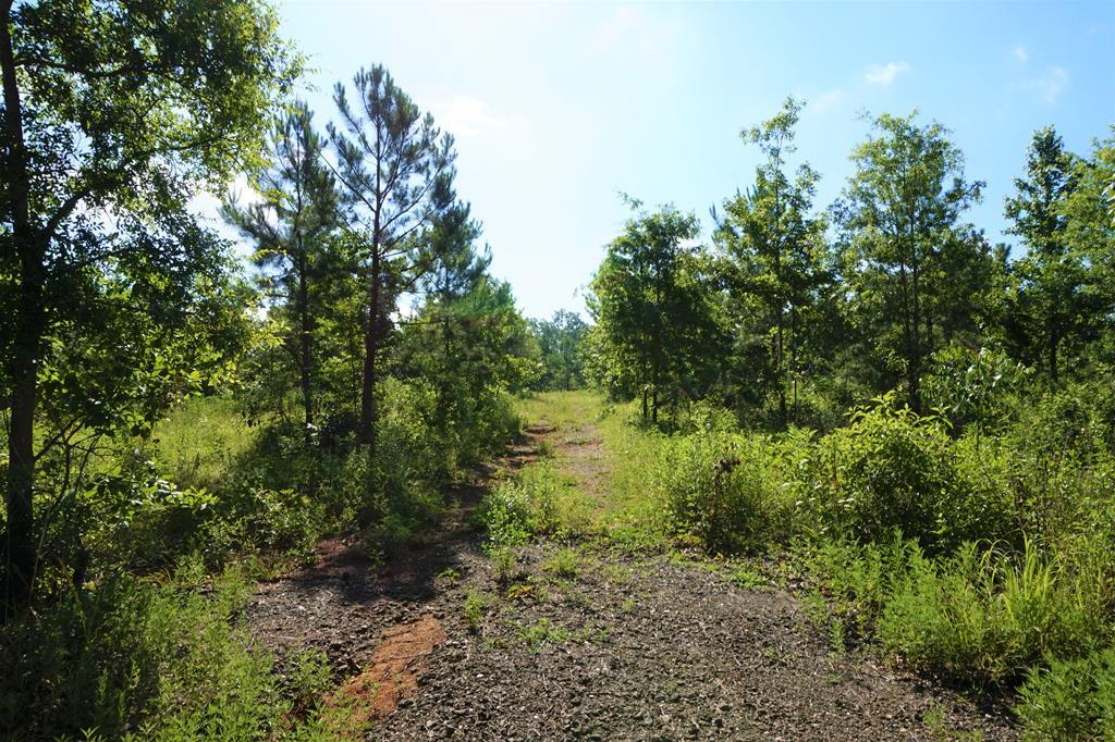 TBD Hightower Road, Lufkin, TX 75901