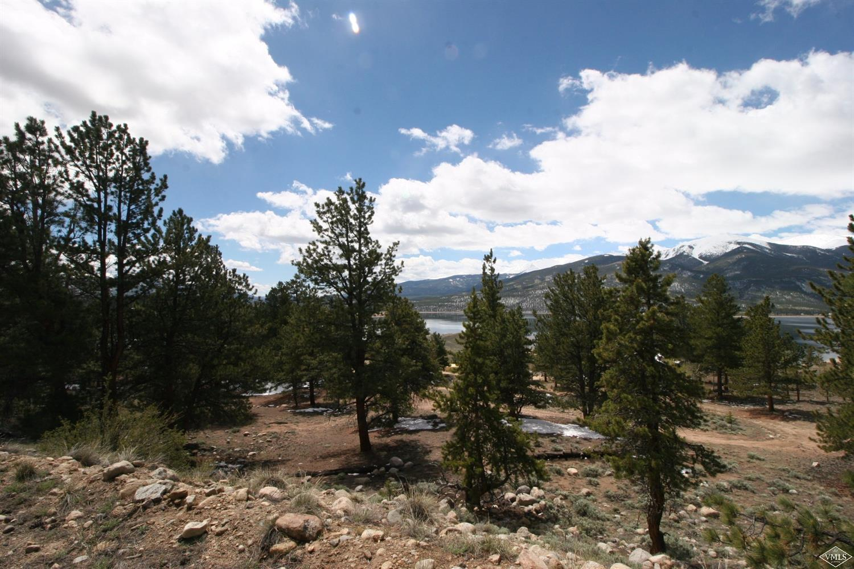 368 Parry Peak Drive, Twin Lakes, CO 81251