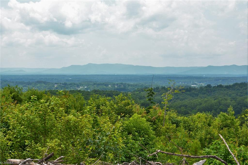 Large tract of land, unrestricted and good road frontage. Nice place to build or clear and pasture. Great view of the Blue Ridge Parkway. Great price and wonderful view!