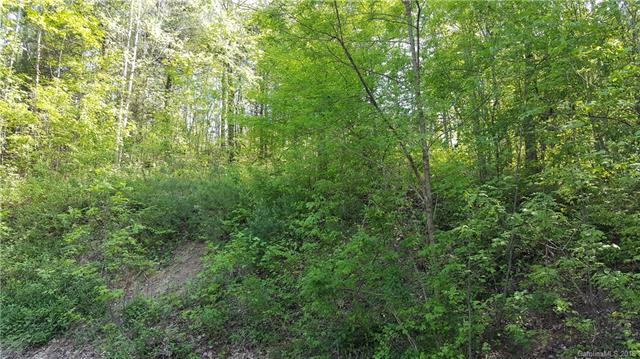 Desireable neighborhood in the Henderson/Flat Rock area. Wonderful private building lot at the end of a cul-de-sac. Underground utilities include public water, sewer and natural gas. Just 2 minutes to downtown Hendersonville.