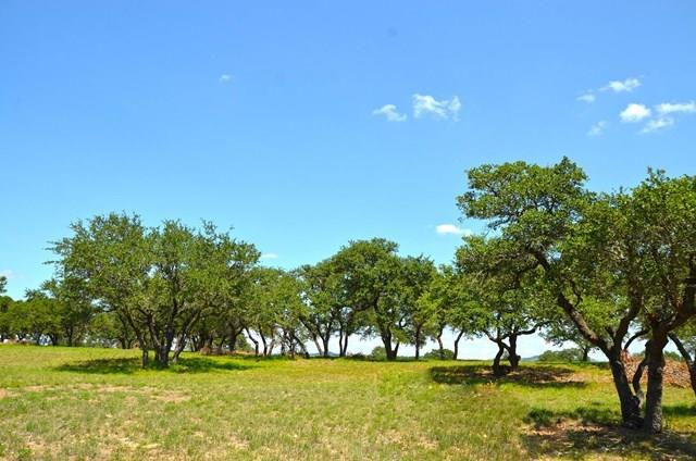 River Ridge Ranch ~ 73.44+/- acres UNRESTRICTED located in the heart of Blanco County. This property has several amazing building sites and phenomenal Hill Country views.  The property has been cleared in several areas and offers some gorgeous live oaks.   Minutes from downtown Blanco and Wimberley. Only 45 minutes to Austin and an hour to San Antonio. 73.44 AC consisting of Tract 1 & 2. Call listing agent for appointment. 6/20/2018 Seller accepted offer on 44.2 AC (Tract 2) See MLS# 1500377 Pending.