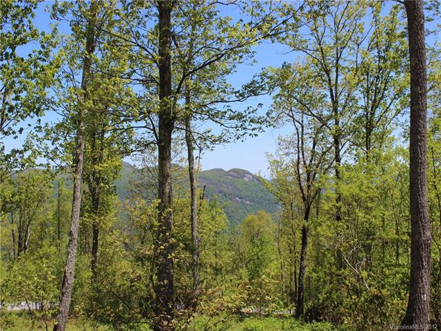 View lot! 1.14 acre in an upscale, gated community minutes from Hville and Lake Lure.  Located on Grant Mountain with panorama long range views of the Blue Ridge mountains. Elevation of 3000 ft. Gentle Topography. Architect drawn house plans included. priced well below tax appraisal of $105,000.