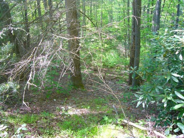 Great subdivision w/privacy. In the country but still close to town. Property has a small creek/stream on the lower back portion of the property with a few small waterfalls. 226 ft. road frontage on a well maintained gravel road. River adjoins the common area and is designed for summer picnics. River is loaded with trout. Property has a variety of hardwoods and a knoll for an excellent building site. Also backs up to Green River Preserve.