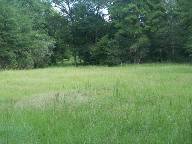 1524 Mill Creek Road, Huntington, TX 75949