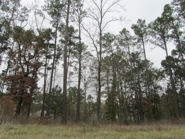 111 Southern Hills, Lufkin, TX 75901