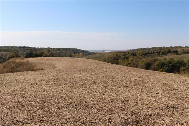 PRICED REDUCED to $625,000.00 when you buy the land and house combined! Here is a great propety that has so many great amenities, it is impossible to do it justice with a description!  Secluded ! GREAT HUNTING!  It consists of 88 acres, 40 acres that are tillable. The property is surrounded by Missouri Conservation land. did I say Hunting?! The owner has taken very nice deer and turkey off the property every year.  (ALl deer and turkey in the photos were taken off of this property)