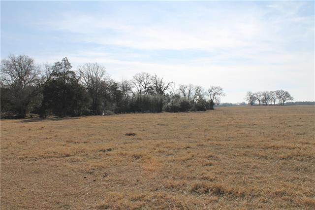 A paved road leads up to this beautiful 14 acre tract (out of 189.5 acres) with a cluster of trees at the front. Deep sandy soil was once home to a peanut farm and is now a gorgeous coastal pasture. A great location and within a one hour drive to Austin and 2 hours from Houston and San Antonio. Restrictions are coming soon.