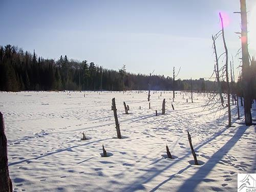 TBD Miners Lake, Ely, MN 55731