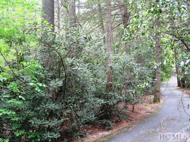 REDUCED AND READY FOR AN OFFER!!! Gorgeous acreage with stream, lush rhododendron, paved access, and easy building site tucked right near the stream. May be subdivided into 2 lots, if desired. One lot would be an in-town lot. Buyer may apply for other lot to be annexed into Town for sewer and water, then Buyer may apply for subdividing. Located just minutes from Main Street. Owner financing available!