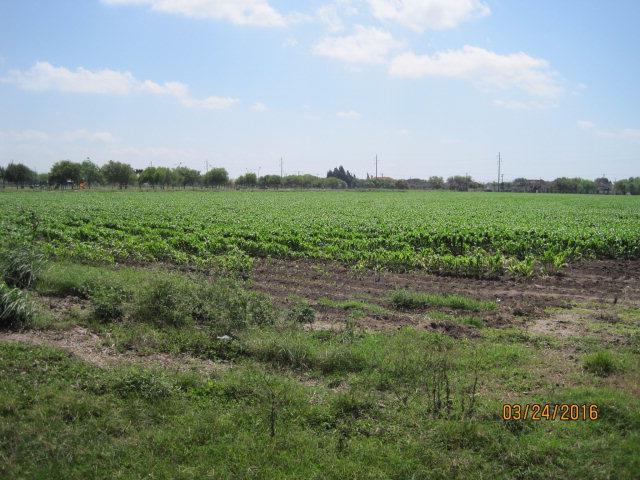0 W Mile 6, Weslaco, TX 78599
