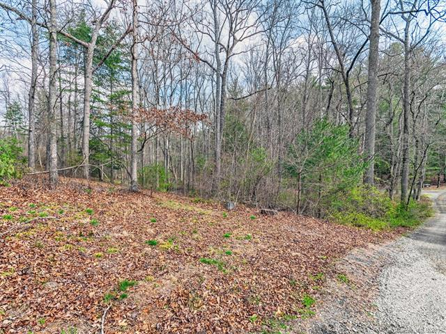 One of the last building lots in prestigious Ashbrook! Gorgeous level lot with beautiful creek offering end of road privacy. Come build your dream home in a community that boasts equestrian riding ring, walking trail and picnic pavilion. Enjoy the ambiance of a country setting minutes from downtown Asheville.