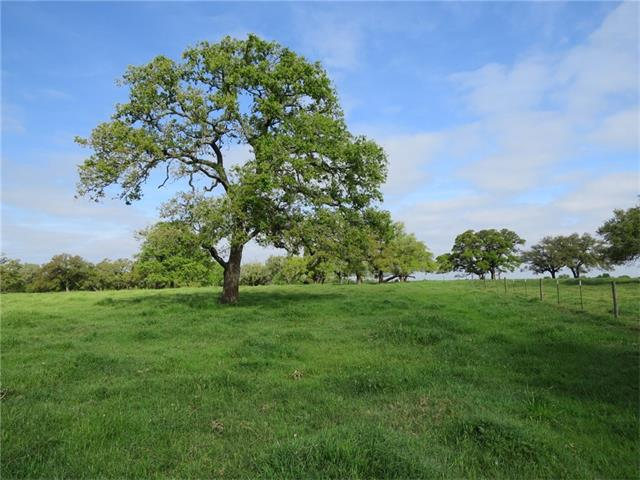 Great RV Park or Vineyard Location!! Intersection of Hwy 290 & CR 202 will be the only crossover between Paige and Giddings. 1318' of Hwy 290 Frontage. Perfect Location and Property Layout. Water Line & Power on Property. Approx 41 acres of pasture, awesome Oaks spread throughout, 13 acres more heavily wooded. Great Lake on Property. Straddles Bastrop/Lee Counties. Car count in excess of 20,000 per day. This Broker walks alot of properties, this one is a must see!
