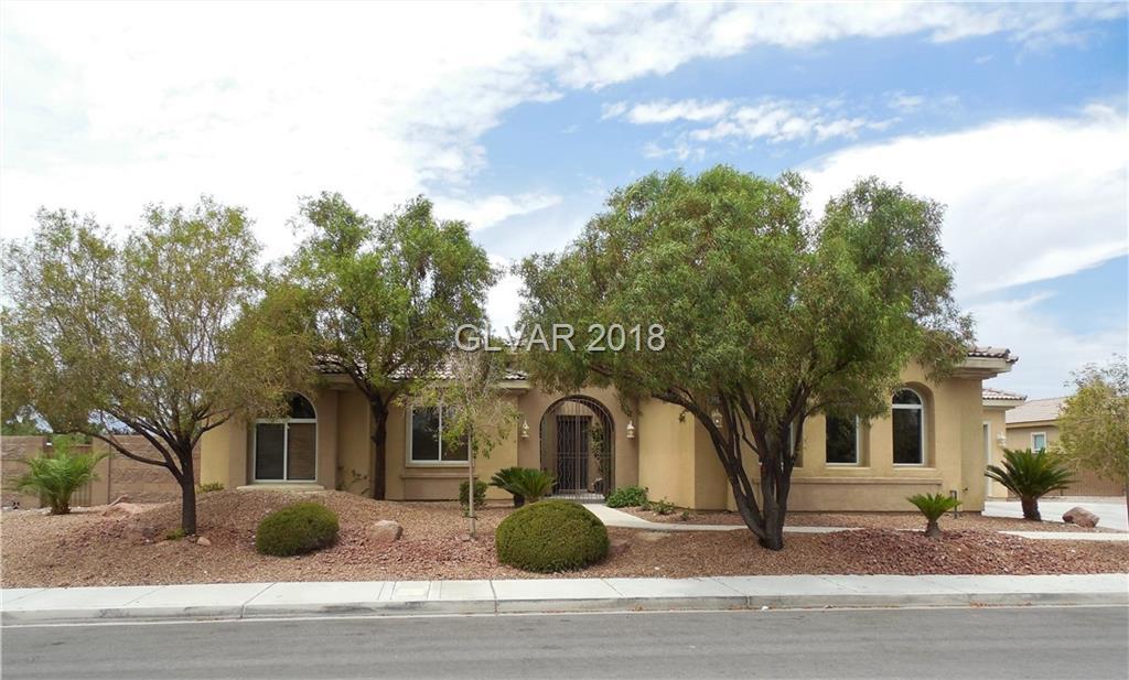 8221 UNICORN Street, Las Vegas, NV 89131