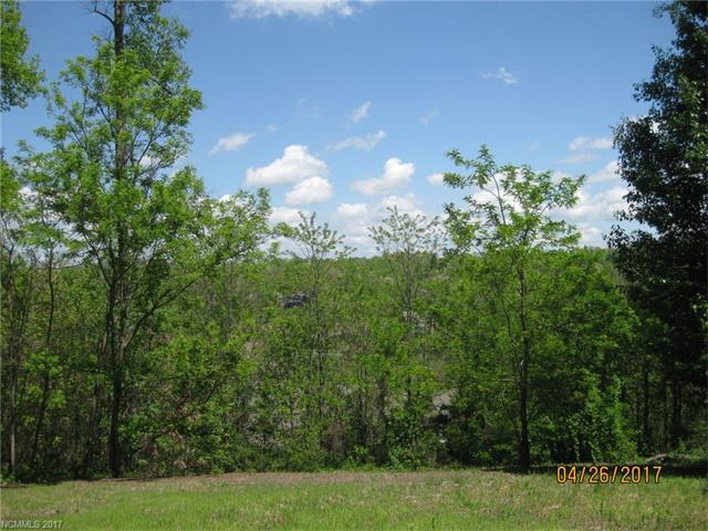 A really great view lot at the top of Carriage Park.Lot is on a cul-de-sac which is mostly cleared and could have a walkout basement. Build your dream home on a one of a kind lot in a beautiful gated community with its clubhouse, indoor pool, tennis courts, lake and ponds and very active social life.