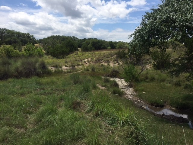 100+/- acres near Lampasas on FM 580 West. The entrance tract is about 2 acres and then widens out to about 900 ft until you reach a mid-point where it widens to about 1800 ft. Aerial available, co-op water & electricity at road. The property has great changes in terrain from rolling to valleys with outstanding hardwood trees throughout.  The views and hunting are great. Pretty creek draw with springs and some ponds. New survey being prepared.
