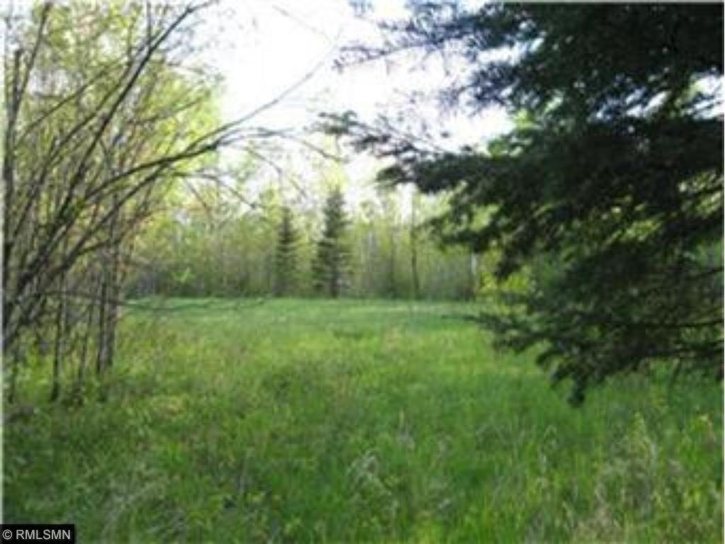 XXXX County Road 132, Kettle River, MN 55757