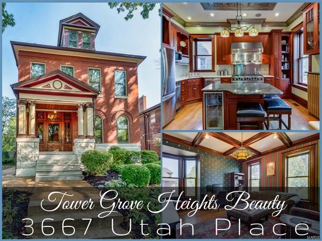 3667 Utah Place, St Louis, MO 63116