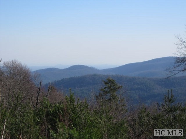 JUST REDUCED!!! When you come to the mountains in search of solace, beauty, and peace, you might imagine being able to look out every day upon the most soul-stirring views -- views that lift your spirits to soaring heights. Finding the perfect site is one challenge; finding the perfect home on the perfect site is yet another. With this lot, you have one of the most sought-after panoramic views in the Highlands-Cashiers area. The perfect opportunity to build your vision of the perfect home. Situated in the gorgeous Blue Valley Pointe neighborhood, this lot features very gentle topography, southern exposure, paved access, end-of-road privacy, and a shared well. Ready for sunsets that leave you speechless? You are home! Spec builders take note: This lot offers a unique opportunity to build a home that the market would clamor for given the views, neighborhood and site. A full set of house plans for this lot are available to purchase.