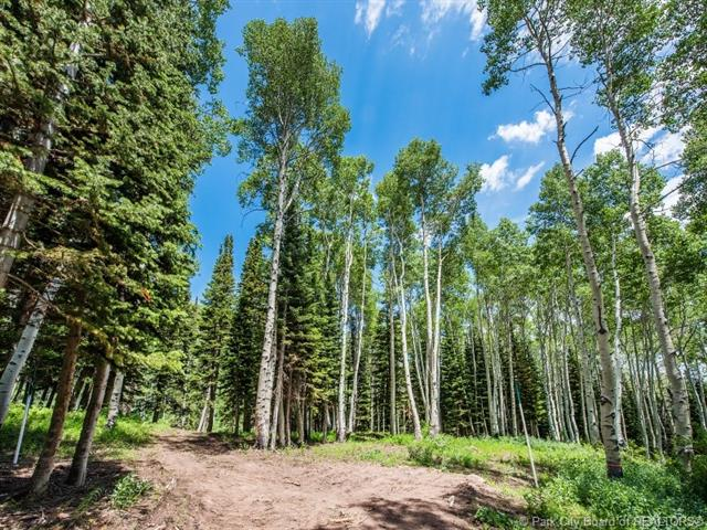 196 White Pine Canyon Road, Park City, UT 84060